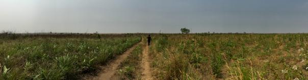 Farm Missionare Evangelique LO-1126