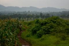 Farm South Kivu