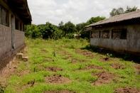 lutendeli-farm-lo-6270